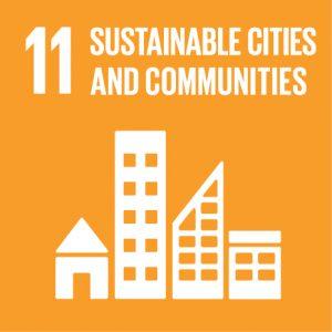 SDG-11