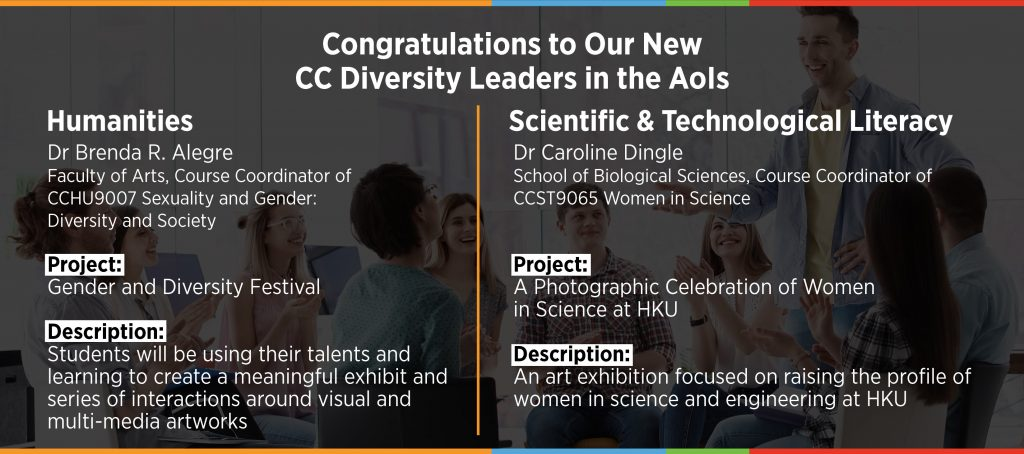 Diversity Leaders in the AoIs