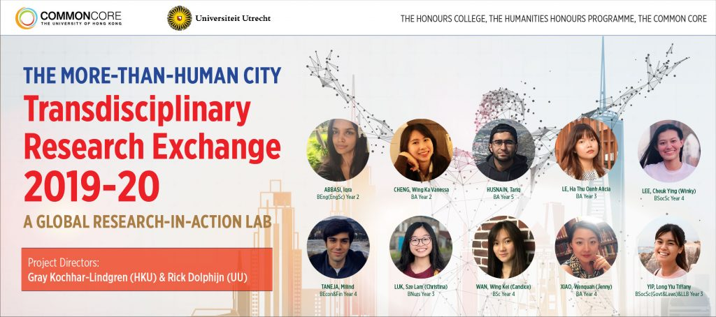 Common Core Transdisciplinary Research Exchange 2019-20