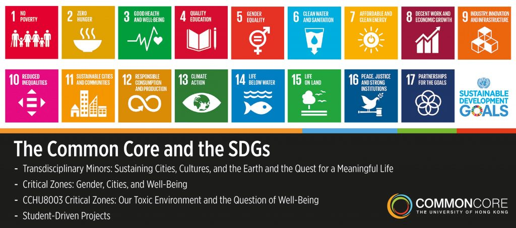 The Common Core and the SDGs