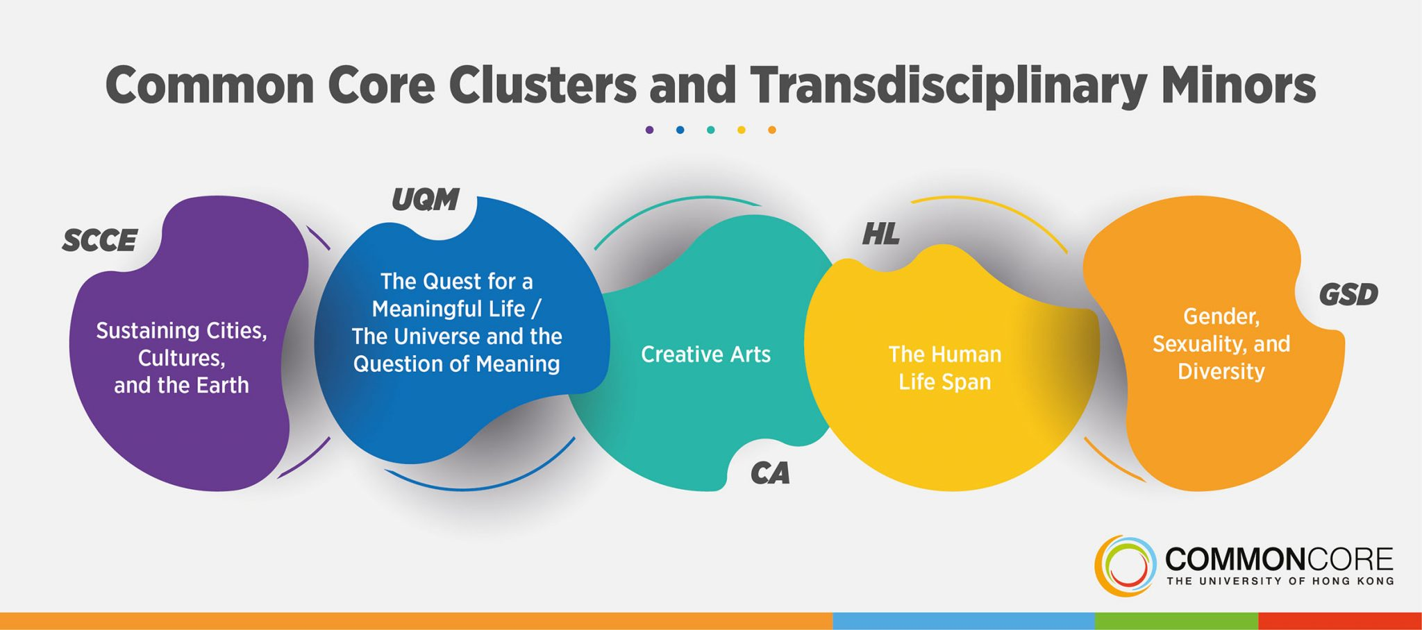 Common Core Clusters and Transdisciplinary Minors
